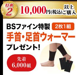 特典2 10,000円(税込)以上ご購入